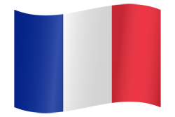 Flag waving xs france